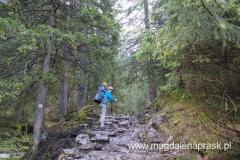żółtym szlakiem idziemy do Wodospadu Siklawica