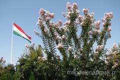 nad centrum miasta powiewa wielka flaga Tadżykistanu