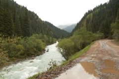 nasz szlak poprowadzony był wzdłuż potoku, droga nie ma dużego przewyższenia