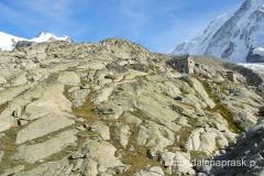 Alpy szwajcarskie