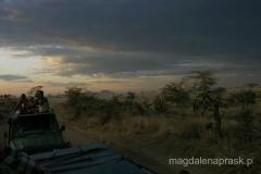 Tanzania - Serengeti - zachód słońca na sawannie