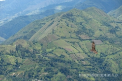 Ekwador - Vilcamamba - kondor szybującu nad górami