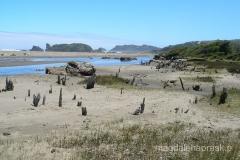Chile - Chiloe