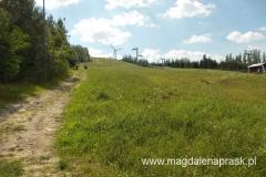 w drodze na szczyt Góry Kamieńskiej