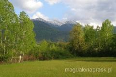 Pelister - piękny szczyt górujący nad miastem Bitola