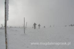 zimą drogę wytyczają tyczki