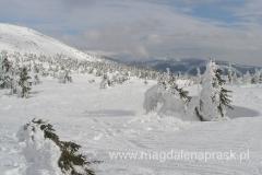 zimowy krajobraz Karkonoszy