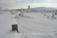 częściowo zakopany w śniegu: pomnik Kalmarinv