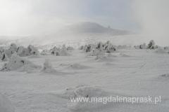 spojrzenie w tył w kierunku Łabskiego Szczytu - widać zabudowania stacji przekaźnikowej przy Śnieżnych Kotłach