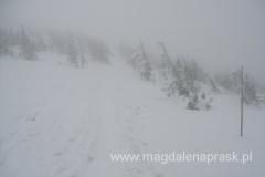 pogoda marna: widoczność mała, śnieży i wiele silny wiatr...