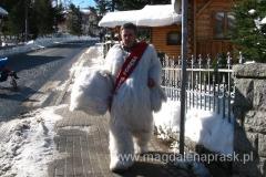 w Szklarskiej Porębie - spotkany po drodze biały miś