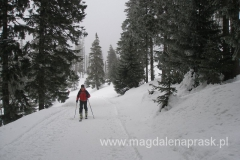 zejście szlakiem zimowym do Karpacza