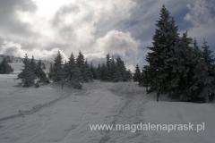 szlak zimowy prowadzący ze schroniska Pod Łabskim Szczytem - drogę wyznaczają tyczki