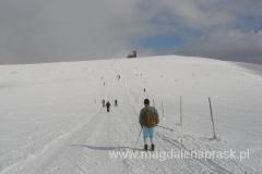 na trasie spotykamy wielu narciarzy