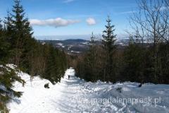 na żółtym szlaku prowadzącym ze Szklarskiej Poręby do schroniska Pod Łabskim Szczytem