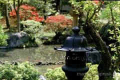tradycyjny ogród