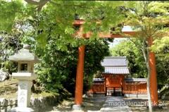 piękny japoński ogród