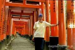 świątynia Fushimi (tysiące bram tori)