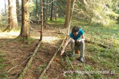koniec lata to czas kolorowych grzybów w lesie