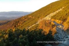 idąc o poranku Magistralą Tatrzańską