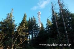 wieża na szczycie Okrąglicy