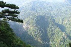 jeden z ostatnich fragmentów lasu pierwotnego w Europie (Perućica) i widoczny w oddali Wodospad Skakavac
