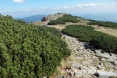 szlak czerwony prowadzący na Przełęcz Krowiarki