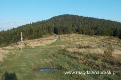 na Hali Krupowej - widok na Okrąglicę