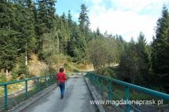 odbijamy w leśną drogę - szukamy szlaku