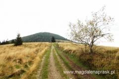 widok z Hali Stumorgowej na Mogielicę