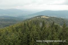 widok z wieży widokowej na szczycie Mogielicy