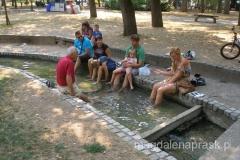 w uzdrowizkowym parku wszyscy moczą stopy w ciepłej wodzie
