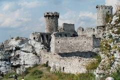 Obecny stan ruin zamku jest efektem prac archeologiczno - konserwatorskich dokonanych przez państwo w latach 1959 - 1973. Nie daje on jednak rzeczywistego wyobrażenia o wyglądzie tej siedziby magnackiej z okresu jej świetności oraz o znaczeniu rodów, które kolejno nim władały.