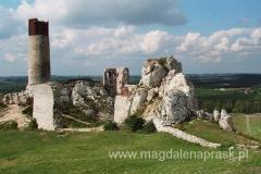 Zamek w Olsztynie zajmuje wysokie wapienne wzgórze zwane Słonecznymi Skałkami.