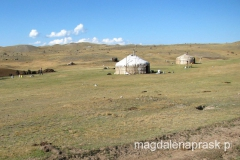 jurta na kirgiskim stepie
