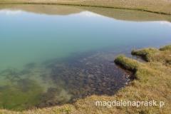 woda w jeziorkach jest niezmiernie czysta