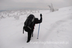 w poszukiwaniu szlaku niebieskiego na Przełęcz Glinne