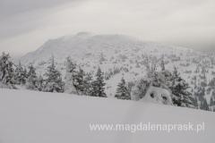 Babia Góra - biała, groźna