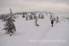 dochodząc na szczyt Małej Babiej Góry