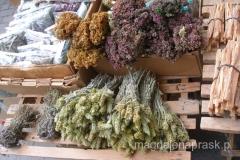 w Macedonii nie pija się czarnej herbaty, herbatę pija się w celach zdrowotnych i najczęściej przyrządza się ją z leśnych ziółek