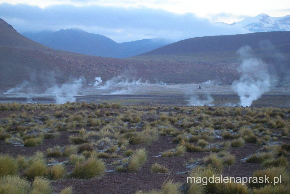 pole geotermalne i gejzery El Tatio, północne Chile