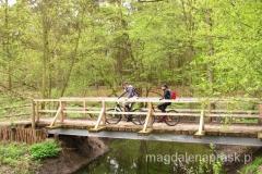 na terenie Wielkopolskiego Parku Narodowego