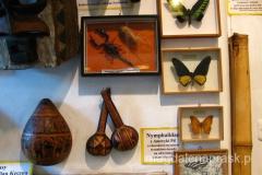 w muzeum można podziwiać włócznie, dmuchawki, rzeźby, maski obrzędowe, a nawet trofea z ludzkich głów
