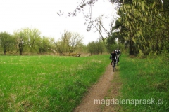 wracamy do Poznania przez Wielkopolski Park Narodowy