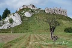 ruiny są usytuowane na niewysokim wzgórzu