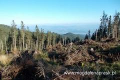 jeden z widoków na podejściu niebieskim szlakiem
