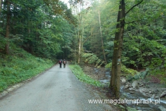 początek trasy - niebieskim szlakiem po asfalcie