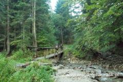 odbijamy w prawo na drewniany mostek, którym pokonujemy potok Wielka Roztoka