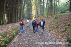 początek szlaku niebieskiego to przejście przez las