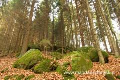 las otaczający Skały Teplickie